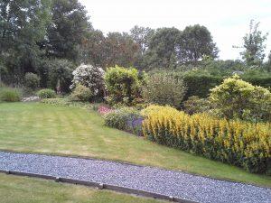 Na het maken van een gedetailleerd beplantingsplan, hebben we  de beplanting in een tuin in Snelrewaard aangepakt.